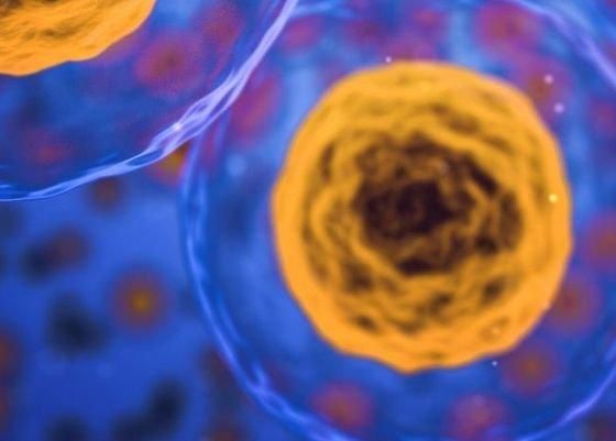 Optimizing patient access for novel stem cell therapy